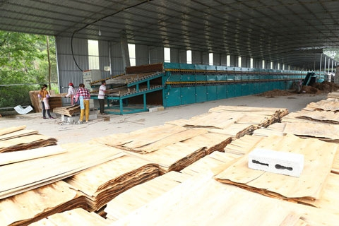 江苏杨木单板干燥机
