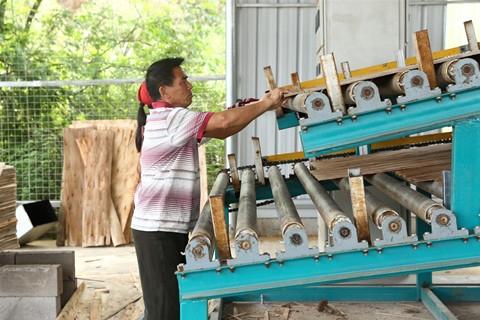 木材烘干设备厂家